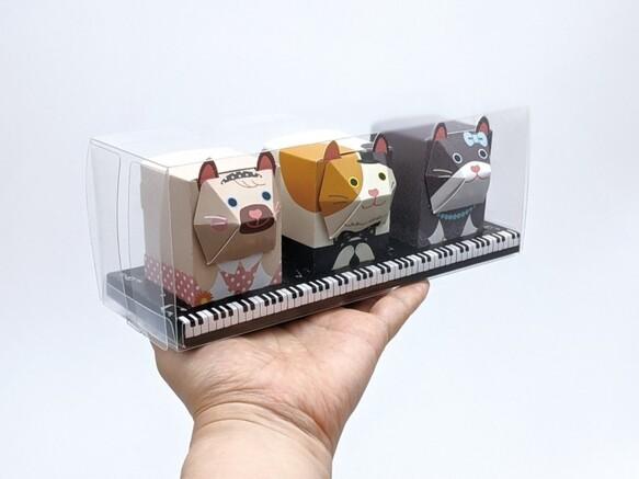 3匹のおめかしネコBOX